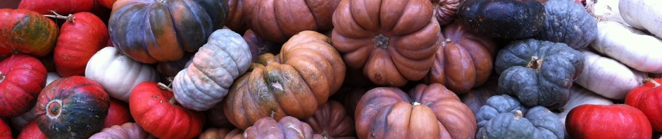 Photo of the day #30: Pumpkins